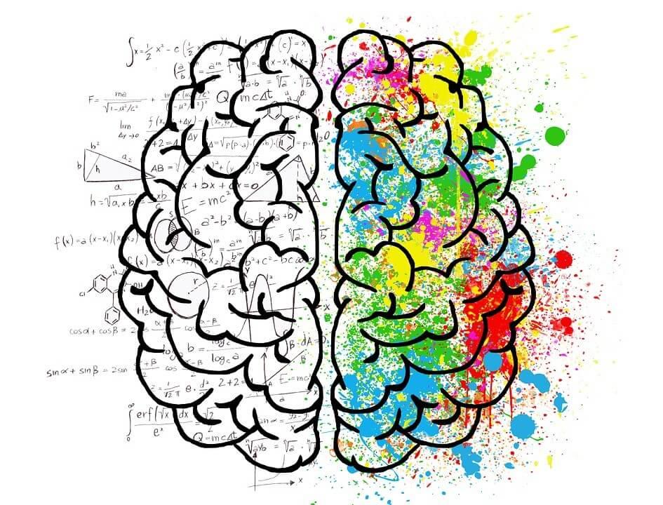 нейродиетология в работе психолога