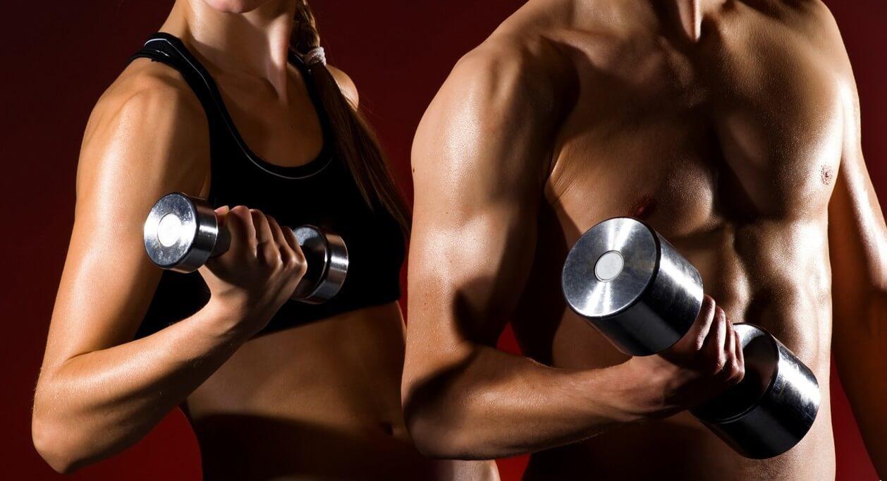 Составление программ тренировок и физических нагрузок